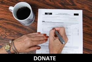 STVdP Donate Button