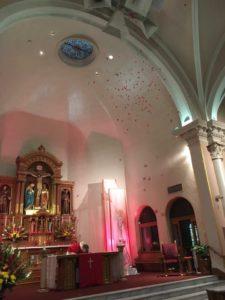 Pentecost petals