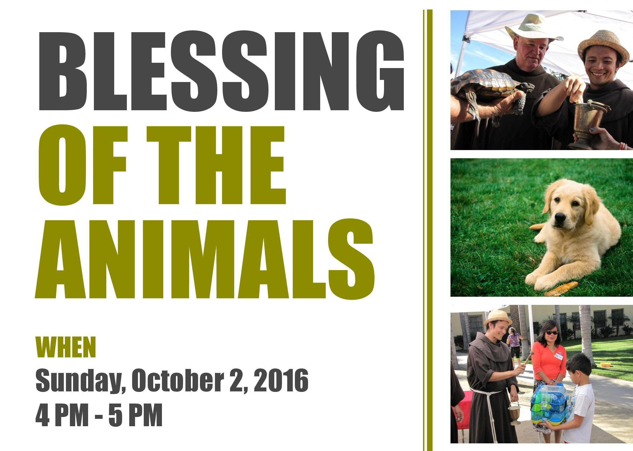 blessing-of-the-animals-graphic